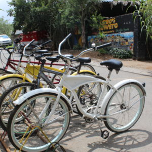 Soweto Bicycle 4 hours